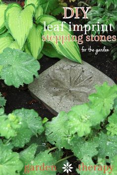 DIY Leaf Imprint Stepping Stones simply and inexpensively made from concrete - make plenty for the garden