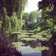 monet's water garden in giverny: one of my favorite side trips when i'm in paris. (february 2014)