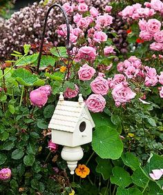What birds wouldn't want to nest among this beautifully tended rose garden? | Photo: Mark Lohman | thisoldhouse.com