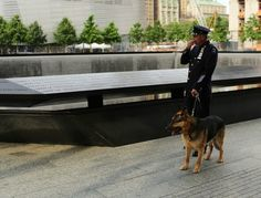 Remembering September 11: Ode to the 9/11 Rescue Dogs  http://www.petside.com/slideshow/september-11-search-and-rescue-dogs#