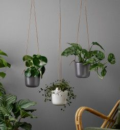 Add an elegant flair to your home with Eva Solo's Self Watering Hanging Plant Pot. These self-watering pots have a gorgeous stoneware exterior which hides the technical self-watering process inside. A refillable reservoir of water ensures the pla Shade Plants, Water Plants, Potted Plants, Indoor Plants, Wicks Diy, Self Watering Planter, Hanging Plants, Outdoor Dining, Outdoor Lighting