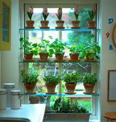 ev ici bitki duzenleme yesil ve cicekli bitkiler raf cozumleri (11)