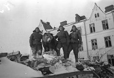 Red Army soldiers (with a bear) at their position in Vyborg