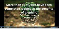 Biophilic slide