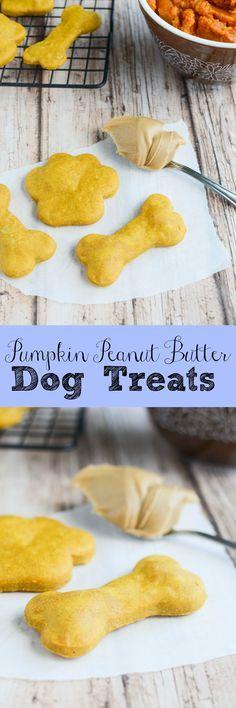Pumpkin Peanut Butter Dog Treats - your pups will love these homemade dog…