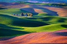 Palouse Sunrise - I find this area enchanting. I keep looking for more and more pictures. maybe I need to see it in person. Beautiful Places, Beautiful Pictures, Fantastic Art, Amazing, Awesome, Birds Eye View, World Best Photos, Beautiful Landscapes, Landscape Photography