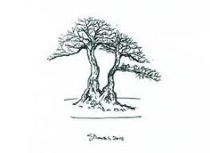 Image result for tropical bonsai