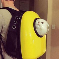 Small Pet Carrier Backpack Astronaut styles