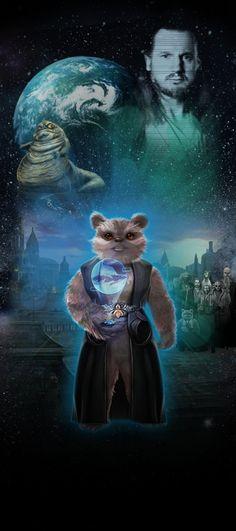 STAR WARS Identites : L'Exposition. Mon Héros Star Wars,  S'louh, une Ewok sénatrice de Naboo!