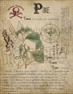 modern witch Herbal Grimoire BOS Sheets vol If you want to save ink, please contact me after purchase. I have files without a antique background as well. Magic plant knowledge has a lo Green Witchcraft, Magick Spells, Pagan, Magic Herbs, Herbal Magic, Grimoire Book, Witch Herbs, Modern Witch, Book Of Shadows