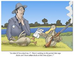 Duck Hunting- now thats funny
