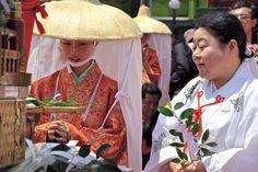 Fox wedding parade,Japan