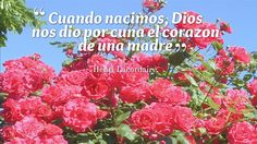 Dia de la Madre, Frases, Poemas. Frases para compartir a las madres.  Nuestro canal de Youtube: https://www.youtube.com/user/frasesdiadelamadre Búscanos en Facebook: https://www.facebook.com/frasesdiadelamadre