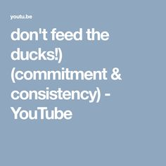 don't feed the ducks!)  (commitment & consistency) - YouTube