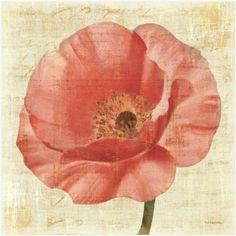 Great Big Canvas 'Blushing Poppy on Cream' Albena Hristova Graphic Art Print Format: Black Frame, Size: H x W x D Wall Art Prints, Canvas Prints, Framed Prints, Big Canvas, Canvas Size, Framed Art, Cream Canvas Art, Flower Close Up, Contemporary Artwork