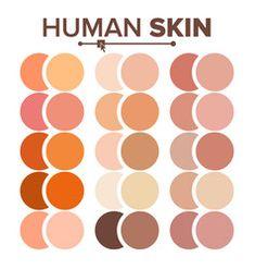 Seasonal color analysis palette for light summer Vector Image Skin Color Palette, Create Color Palette, Palette Art, Color Palettes, Human Skin Color, Human Vector, Color Palette Challenge, Seasonal Color Analysis, Color Vector