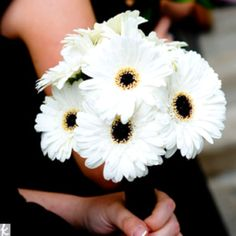 Gerbera Daisy Bouquet - Love the daisies!  Mine are going to be red, the bridesmaids goldie/yellow!