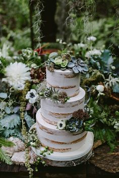 naked wedding cakes decorated with succulents