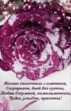 Vegetables, Flowers, Plants, Roses, Pink, Rose, Vegetable Recipes, Plant, Royal Icing Flowers