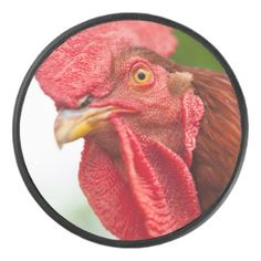 Rhode Island Red Rooster Hockey Puck - red gifts color style cyo diy personalize unique