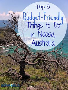 Top 5 Budget-Friendly Things to Do in Noosa, Australia {Big World Small Pockets} Noosa Australia, Australia Travel, Melbourne Australia, Best Places To Travel, Places To See, Thing 1, Camping, Small World, Romantic Travel