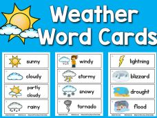 All kinds of different word cards- pond life, weather, dinosaur, arctic animals, fire safety, shape, emotions, etc.