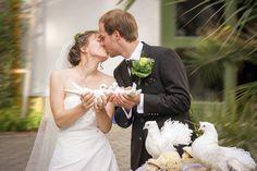 Free Image on Pixabay - Wedding Kiss, Kiss, Love, Marry Wedding Ceremony Ideas, Wedding Kiss, On Your Wedding Day, Types Of Photography, Wedding Photography, Wedding Videos, Wedding Photos, Big Party, Best Wedding Photographers