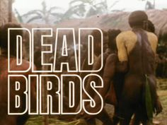 """""""Dead Birds"""" - Ethnographic Film depicting the lives of a Papa New Guinea group. Robert Gardner, 1964"""