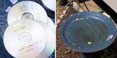 Wunderschöne Lichtfänger aus alten CDs