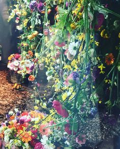 Badebaño Instahram /Decoracion Tiendas /Fotografia Instagram: Cascada de flores en el escaparate de la famosa tienda de adornos florales @Bossvi !. #DecoracionTiendas #Diseño #EscaparatesBarcelona  /FotografiaInstagram #badebaño