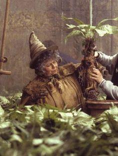 harry potter herbology - Pesquisa Google