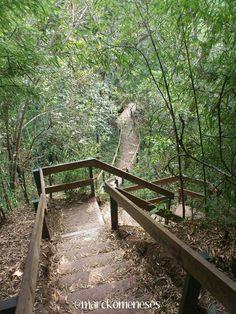 Macuiltepetl (Volcan y Parque Ecológico localizado justo al centro de la ciudad). Xalapa, Veracruz.