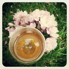 Dag290: echinea thee