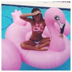 Pool Vibes :: Flamingo Float :: Summer Vibes :: Friends :: Adventure :: Sun :: Poolside Fun :: Blue Water :: Paradise :: Bikinis :: See more Untamed Summertime Inspiration Summer Goals, Summer 3, Summer Of Love, Spring Break, Summer Vibes, Summer Things, Soft Summer, Summer Months, Style Summer