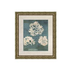 Coral Print I (395 CNY) ❤ liked on Polyvore featuring home, home decor, wall art, art, coral home decor, textured wall art and coral wall art