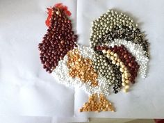 Rice and beans are not only for cooking. The grains can also be used to make mosaic art on cardboard or cloth. First draw the design you w...