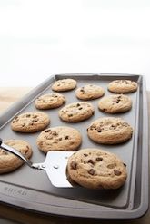 Science Fair: Types of Cookie Sheets