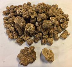 15 pounds white alba truffles from Mikuni Wild Harvest