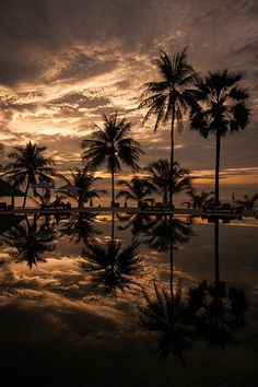 Sunset - The Surin resort, Phuket, Thailand