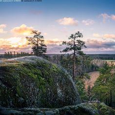Jaanankallion huippu - kallio kukkula mäki huipulla korkealla korkea ylhäällä auringonnousu valo varjo maisema huippu luonnonsuojelualue sininen vihreä metsä puut puu mänty pelto horisontti taivas pilvet syksy Jaanankallio sammal