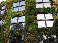 green-design-ideas-inspired-by-nature-2-17-2