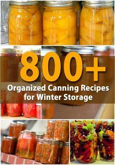 http://DIYnCrafts.com: 800+ Organized Canning Recipes for Winter Storage - If you have grown a garden this summer or if you simply have an abundance of vegetables and fruits that you want to preserve for winter, there are many ways of canning those foods. -- Traditionally, canning was a way to keep foods that were abundant in summer and make them last until the garden came out again the next year.