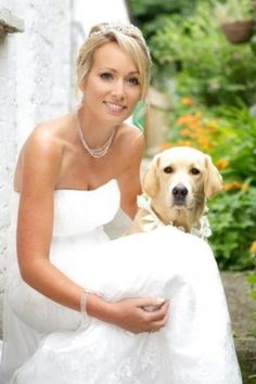 Wedding day. Labrador