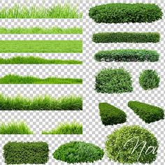Clipart – Green grass, lawn, shrubs on a transparent background - Background