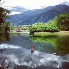 Taman Tasik Taiping (Lake Garden) in Bandar Taiping, Perak Lake Garden, Taiping, Four Square, Paradise, Heaven