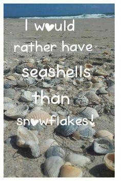 Beach Quotes - Fushion News Ocean Beach, Beach Bum, Beach Ocean Quotes, I Love The Beach, Just Dream, Florida Travel, Beach Pictures, Beach Themes, Travel Quotes