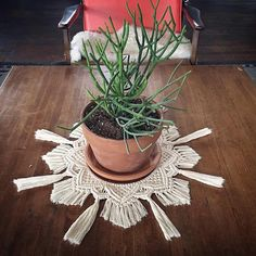 "1,432 mentions J'aime, 12 commentaires - Macrame✨Cindy Bokser✨ (@niromastudio) sur Instagram : ""Love this sunburst centerpiece by Kari at @naecogreen ☀️❤️ Even the littlest differences make such…"""