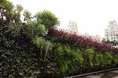 patrick blanc jardines verticales -