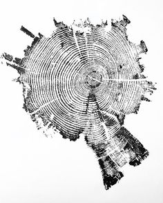 [Image: An otherwise unrelated print of tree rings from Yellowstone National Park, by LintonArt; buy prints here]. National Park Gifts, National Parks, Park Art, Tree Wall Art, Buy Prints, Artwork, Rustic Decor, Free Paper, Collage