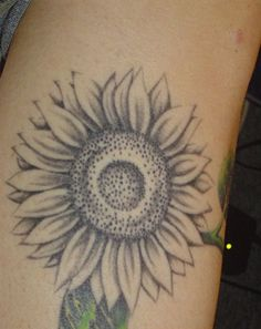 Sunflower tattoo...me likey. Kansas tat...it's happening.